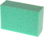 AXIS-General Purpose Sponge